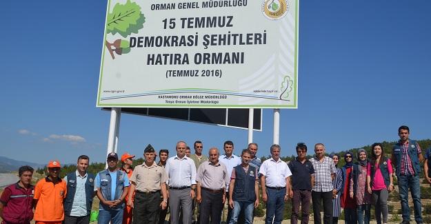 """""""15 Temmuz Demokrasi Şehitleri Hatıra Ormanı"""" kuruldu"""