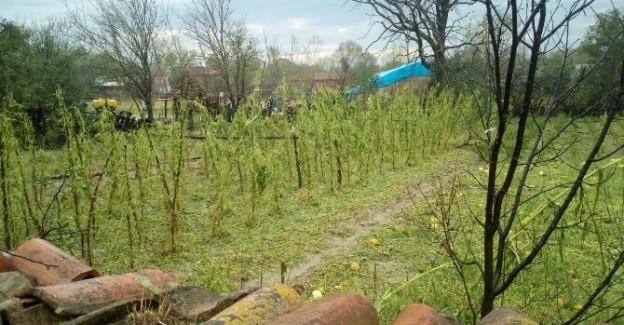 Sağanak yağış  ve fırtına, Kastamonu'da etkili oldu