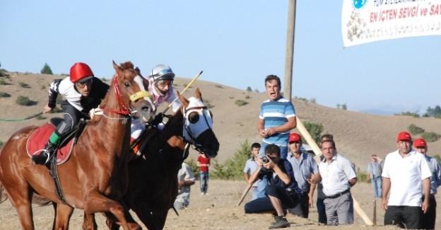 Taşköprü'de at yarışları düzenlenecek