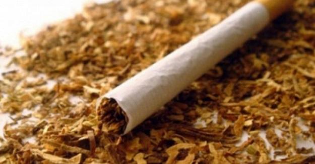 Daday'da kaçak tütün operasyonu