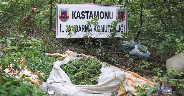 Kastamonu'da 10 kilogram esrar ele geçirildi