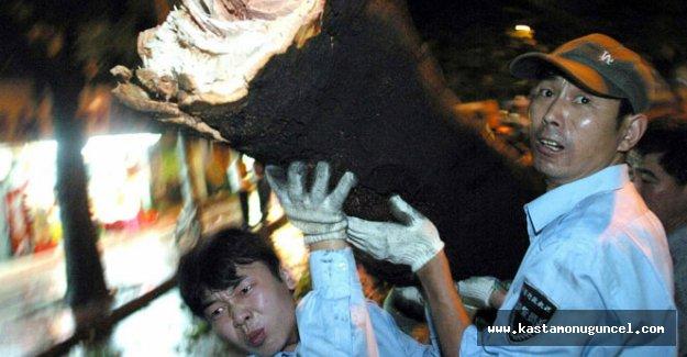 Çin'i tayfun vurdu: 13 ölü