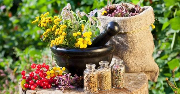 Homeopati ile yaşamsal gücünüzü yeniden aktive edin