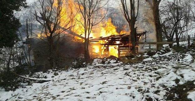 Kastamonu'da ev ve ambar yandı, 8 hayvan telef oldu