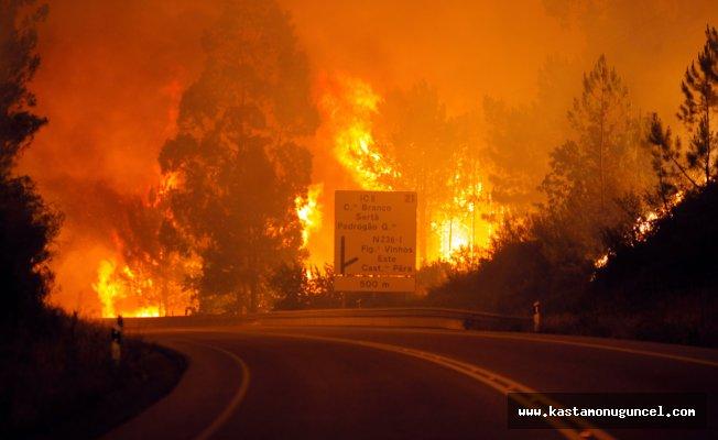 Portekiz'de yangın: 57 ölü!