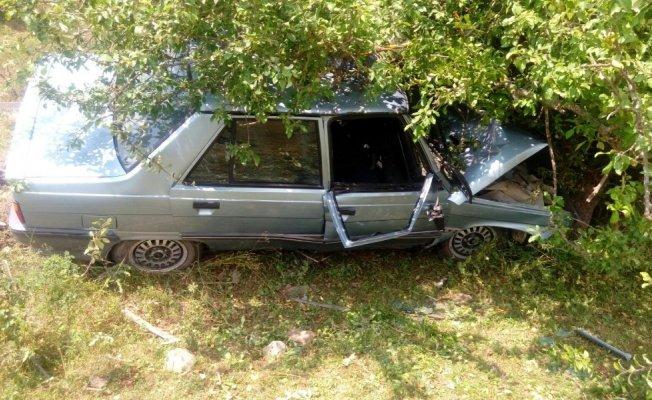 Kontrolden çıkan otomobil, ağaca çarptı: 1 yaralı