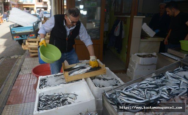 Karadenizli balıkçının umudu hamside!