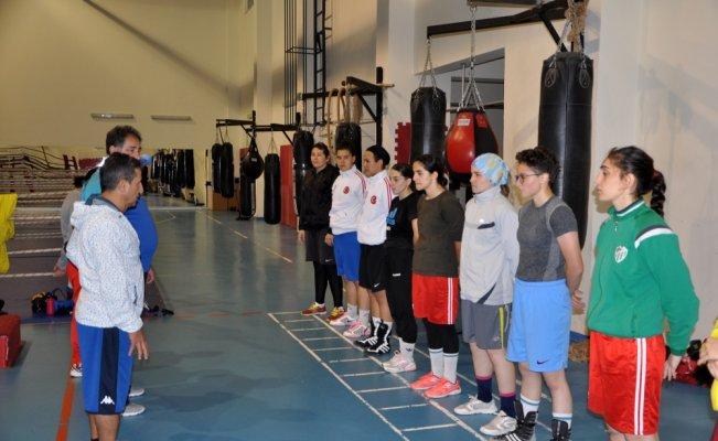 Genç milli boksörlerin Kastamonu kampı sürüyor