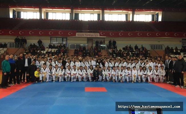 Kastamonu'da Taekwondo şöleni