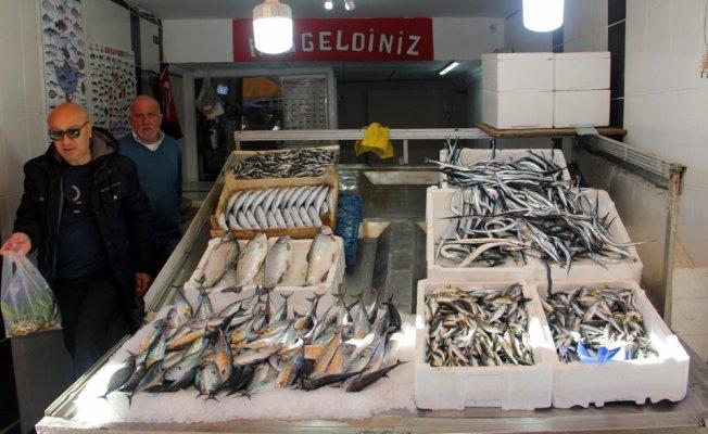 Balıkçılar hamsiden dertli