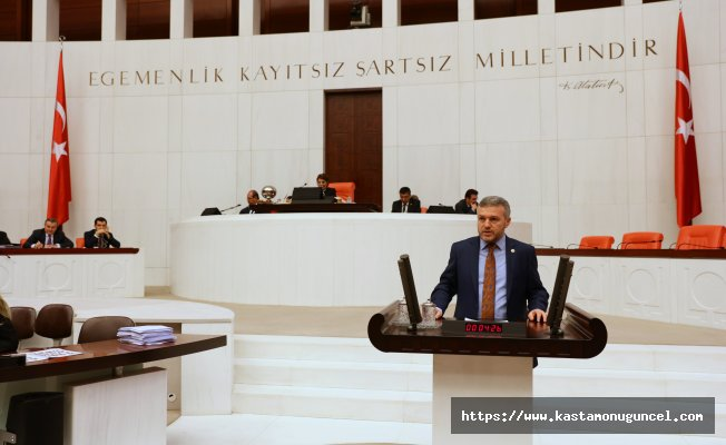Milletvekili Çelik, SGM bütçesi üzerine TBMM'de konuşma yaptı