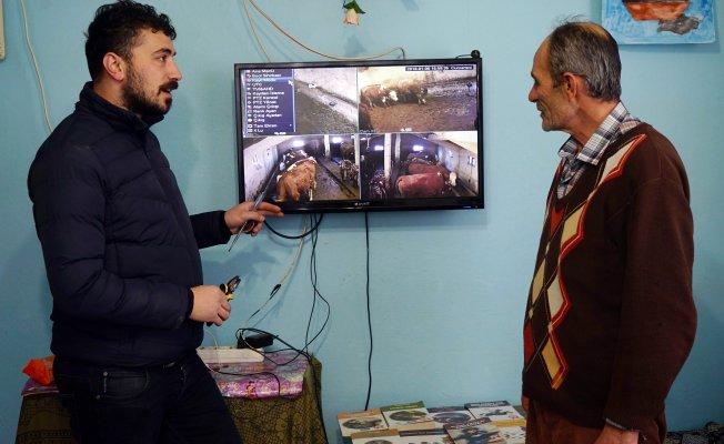 Çiftçiler, ahırlarına kamera sistemi kurdurmaya başladı